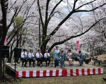 4/10 弘法山桜音楽祭