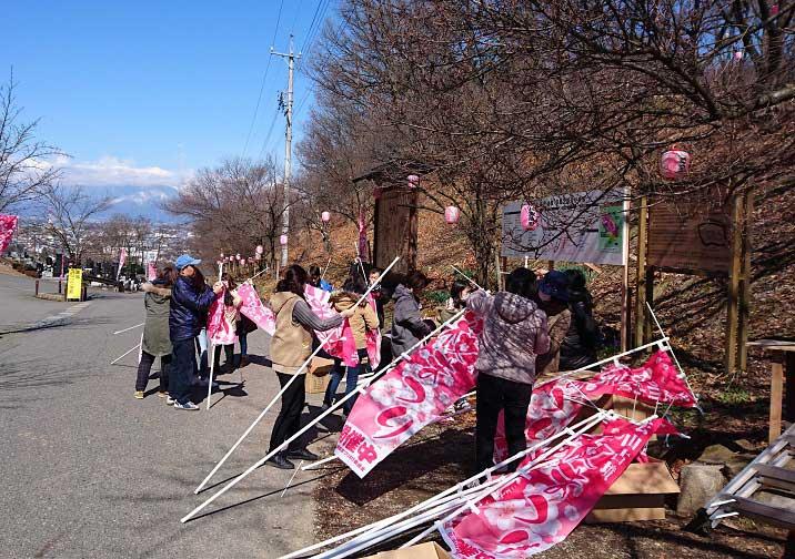 桜開花に向けて準備万端