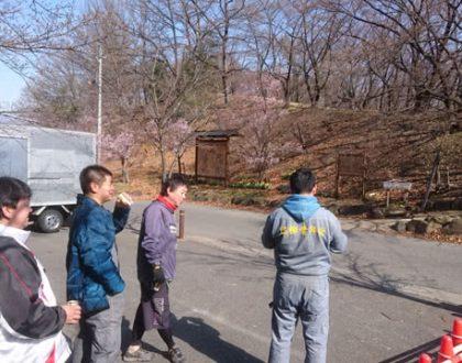 2018年桜咲き始めました